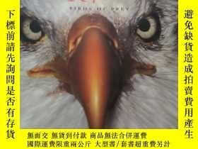 二手書博民逛書店Raptors:罕見Birds of Prey【猛禽】Y1806