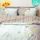 床包 / 雙人【香草綠】含兩件枕套 10...