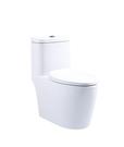 《修易生活館》 凱撒衛浴 C1364 超...