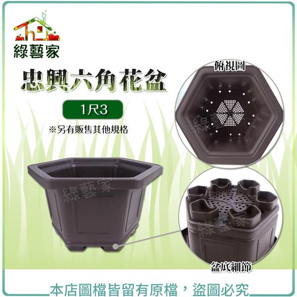 【綠藝家】忠興六角花盆 1尺3(加厚材質)