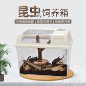 高透明爬蟲塑膠飼養缸飼養盒角蛙盒烏龜缸手提籠整理箱 QQ25968『MG大尺碼』