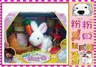 *粉粉寶貝玩具*㊣淘氣拉比兔 ~超可愛 ...