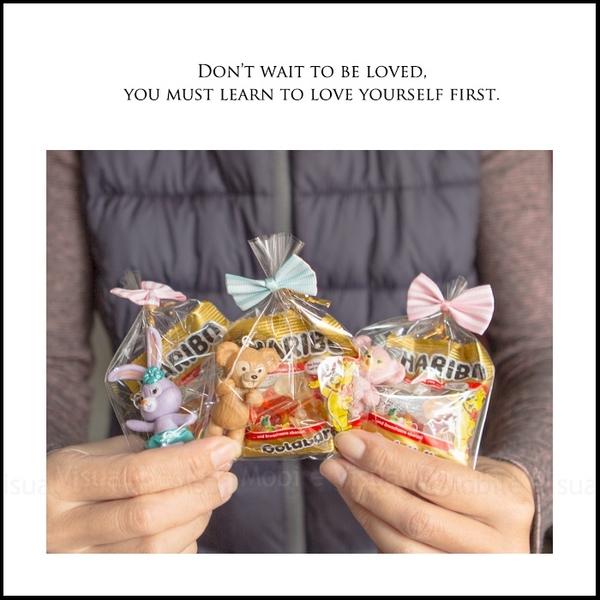 精巧包 達菲 雪莉玫 史黛拉兔鑰匙圈+德國小熊軟糖(款式隨機出貨) 婚禮小物 生日 幼稚園活動