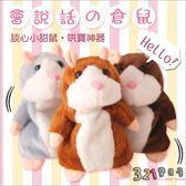 會說話倉鼠錄音老鼠 回聲玩偶哈姆太郎兒童玩具-321寶貝屋