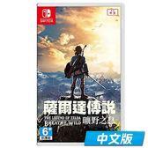 【軟體世界】NS 任天堂 Nintendo Switch 薩爾達傳說:荒野之息 (中文版)