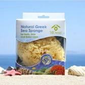 【希臘BIOESTI】地中海天然海綿3-3.5吋一入(洗臉卸妝用)(加送100克橄欖皂一入)