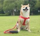 牽引繩 牽引繩中型小型犬寵物遛狗繩子背心式貓繩貓咪背帶泰迪狗鏈子【快速出貨八折下殺】