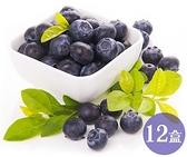【果之蔬-全省免運】 智利進口藍莓(每盒125g±10%) x12盒