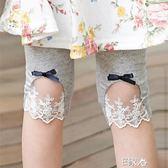 打底褲小童女童夏款七分蕾絲短褲薄款