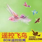 大號遙控小鳥玩具飛鳥模擬撲翼鳥會飛的鴿子充電男女兒童飛行新奇   走心小賣場