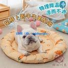 寵物冰墊睡墊夏季涼窩涼席墊耐咬降溫貓咪墊子【櫻田川島】