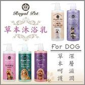 *WANG*Royal Pet 皇家寵物《深層亮白-蓬鬆感/高效保濕/紅貴賓/非藥性除蚤/問題皮膚》500ml