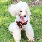 狗牽繩-耐用馬夾式透氣小型犬適用寵物胸背帶拉繩9色72ao3【時尚巴黎】