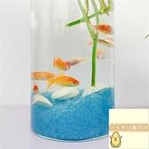 圓柱形迷你景觀金魚缸新品魚缸面水培植物花瓶魚缸圓柱形【小玉米】