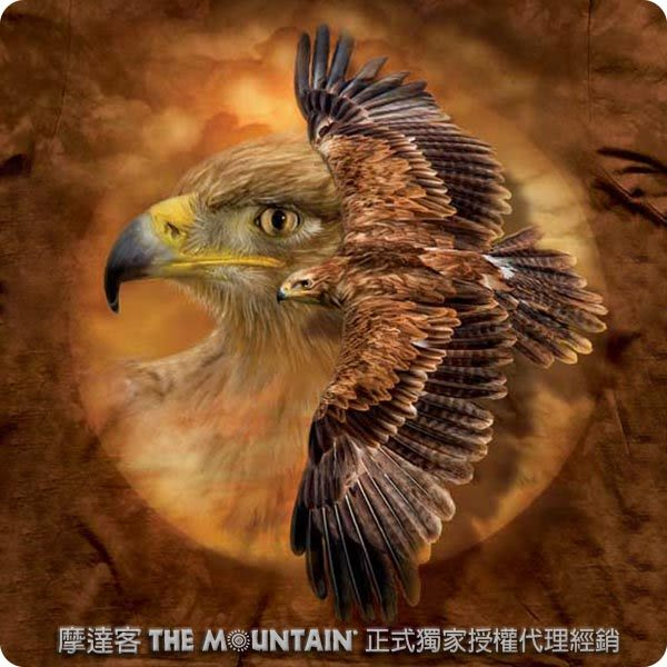 【摩達客】 (預購)(大尺碼3XL)美國進口【The Mountain】 棕鷹精神 T恤(10413045126ab)