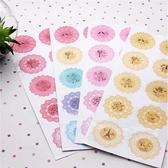 文具【PMG522】浪漫蕾絲透明貼紙 -收納女王
