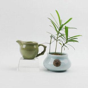 龍泉青瓷米黃釉奶杯