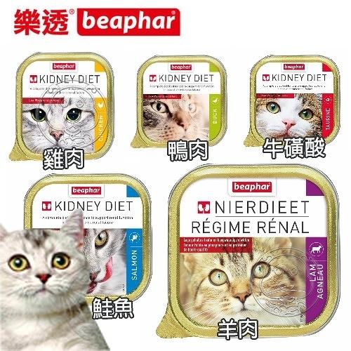 【培菓幸福寵物專營店】樂透餐盒 樂透 beaphar 貓咪 腎臟保健餐盒 100g