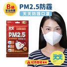 【PM2.5防霾口罩_紅色警戒專用】每包2入 1包販售 B級安全防護 100%台灣製造 (防霾 防空汙 防PM2.5)