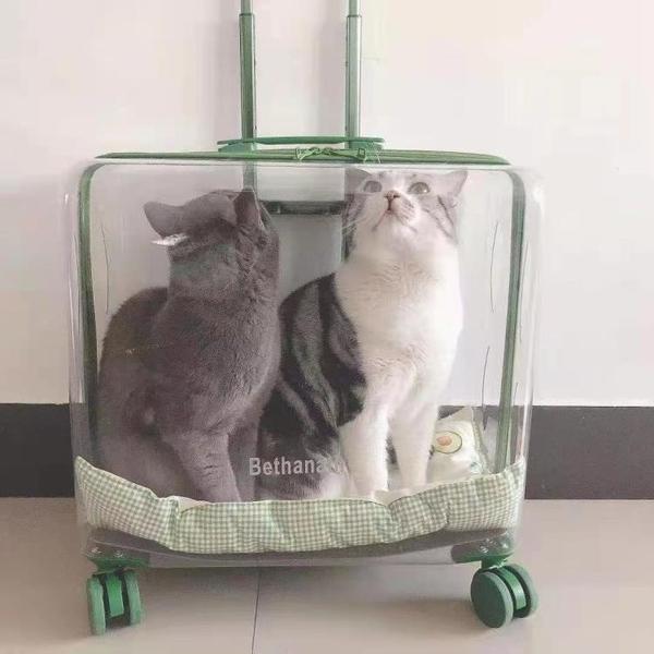 泡泡箱貓包外出便攜手提透明寵物狗狗拉桿箱大號透氣太空艙大容量
