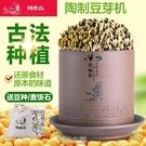 生豆芽機家用全自動大容量發豆芽神器鈞瓷陶瓷豆芽罐豆牙發牙菜機 現貨快出