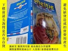 二手書博民逛書店Sheltie罕見Saves the Day(Sheltie挽救了這一天Y200392