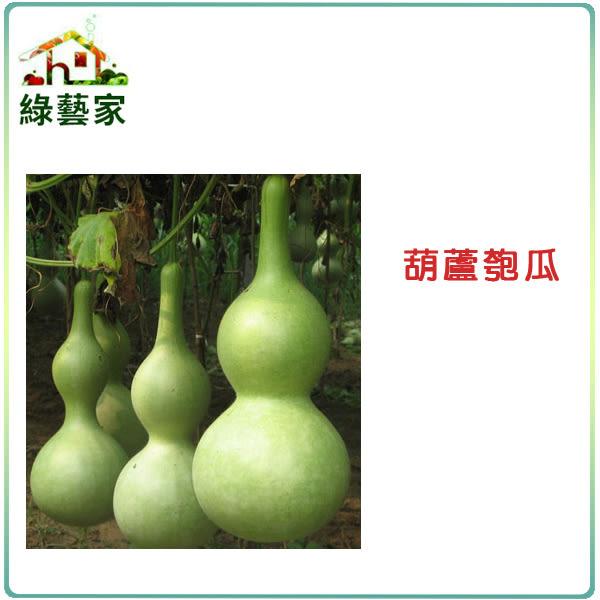 【綠藝家】G32.葫蘆匏瓜種子10顆