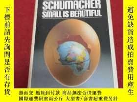 二手書博民逛書店Small罕見is Beautiful: A Study of