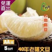 《普明園》 AA級台南麻豆40年老欉文旦 (5台斤/箱)【免運直出】