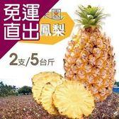 沁甜果園SSN. 金鑽鳳梨2支裝/5台斤E00900060【免運直出】