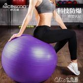 防爆兒童健身球孕婦分娩專用助產瑜珈平衡球 Chic七色堇