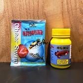 神奇寶貝 快樂游【粉狀硝化光合活菌】【40g/罐】硝化菌 分解亞硝酸與氨 減少青苔 病菌 魚事職人