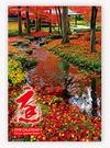 2019日本進口膠片月曆~NK401庭園*13張-雙月曆~天堂鳥月曆