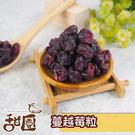 蔓越莓果粒 200g隨身包 美國 蔓越莓 果粒 水果乾 女孩必吃 果乾 無糖果乾【甜園】