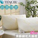 頂級天絲超柔枕2入 防蹣 抗菌 舒適 柔軟 TENCEL 台灣製