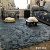 可水洗絲毛地毯客廳沙發臥室床邊可愛家用滿鋪地墊榻榻米可-享家生活館 YTL