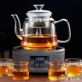 茶壺蒸汽煮茶器玻璃蒸茶煮單壺電陶爐家用全自動泡茶白茶茶器套裝 法布蕾