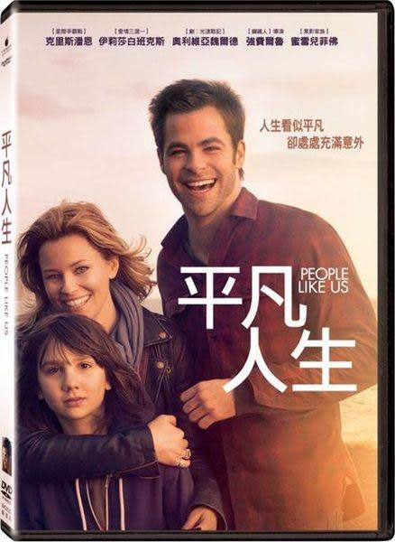 平凡人生 DVD (音樂影片購)