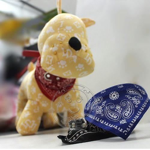 【 培菓平價寵物網 】寵物披風項圈三角巾 (戴前戴後都好看)