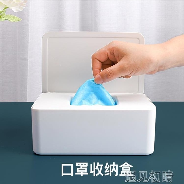 收納盒抽取式口罩盒大容量收納盒大號箱放置盒子收藏存放暫存口鼻罩家遇見初晴