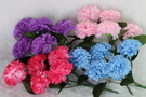一束5朵 人造康乃馨花束. 母親節禮物花束☆人造花.居家.店面.櫥窗擺飾 [魚痴的秘密花園]