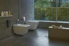 【麗室衛浴】瑞士原裝 laufen 懸吊式馬桶  82090.0 含緩降馬桶蓋及埋壁水箱  門市樣品出清