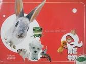 【書寶二手書T2/動植物_OJV】Q寵物_陳亮姿