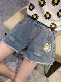 女童小雛菊破洞牛仔短褲2020新款韓版女大童兒童夏季洋氣外穿褲子 雙11提前購