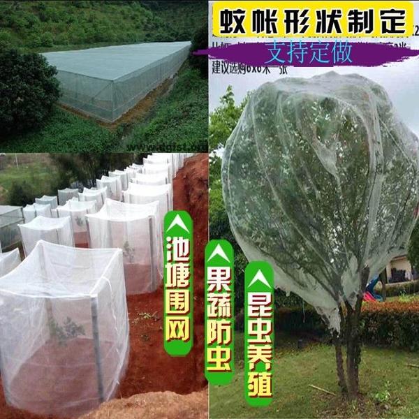 果樹防蟲網罩防鳥網罩子農用大棚蔬菜楊梅蓮霧羅幔菜地防蟲網家用快速出貨