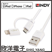 LINDY林帝 雙接 LINDY林帝 LIGHTNING + MICRO-B 二合一USB傳輸充電線(31344) 1M/1米/MFI認證