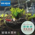 [ 河北水族 ] HB AQUA 【 玻...