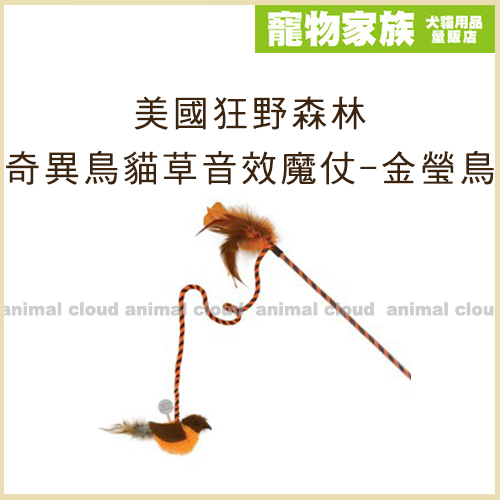 寵物家族-美國Play-N-Squeak狂野森林 奇異鳥系列貓草音效魔仗-金瑩鳥