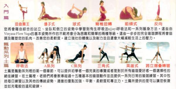 最新完全瑜珈 VCD 4片裝 入門篇 飄動系列土篇水篇火篇 Tracey Ri