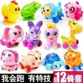 發條動物嬰兒玩具兒童小孩幼兒益智寶寶玩具0-1-2一周歲6-12個月 自由角落